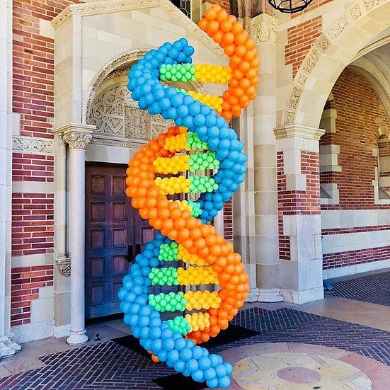 Фигура ДНК из воздушных шаров