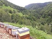 les-ruchers-d-iseye_250x440.jpg