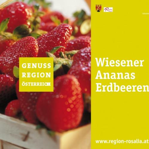 Genussregion Wiesener Ananas Erdbeeren