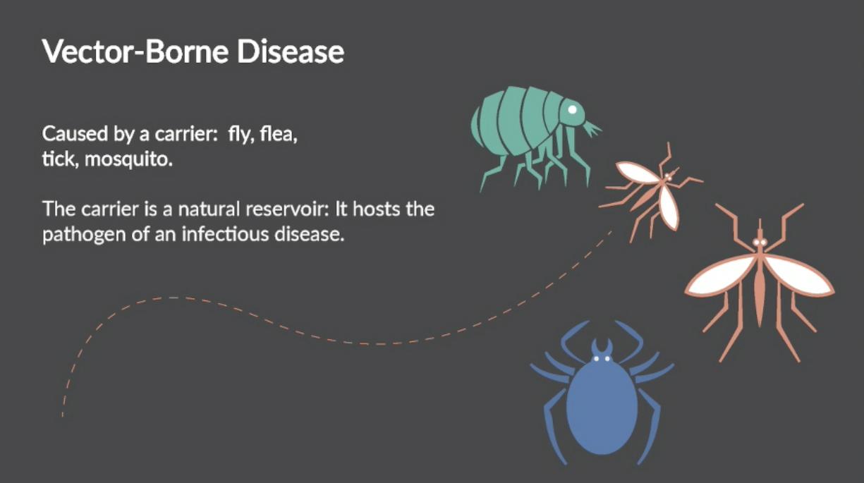 Infectious Disease Course