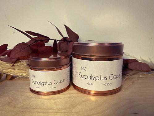 Bougie parfumée Eucalyptus Corse
