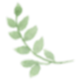 greenery5.png