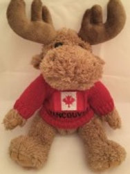 Moose with Vancouver Sweater