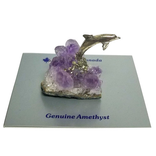 Pewter Dolphin on Amethyst