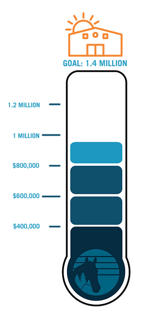 Fundraising Graphic Meter-01.png