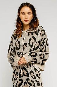 Olivaceous Leopard.jpg