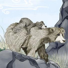 bear 1 WEB.jpg
