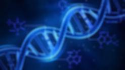ADN.jpeg