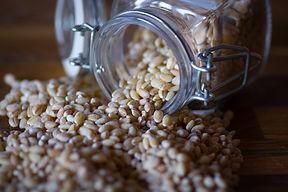 cereals-3709571_1920.jpg