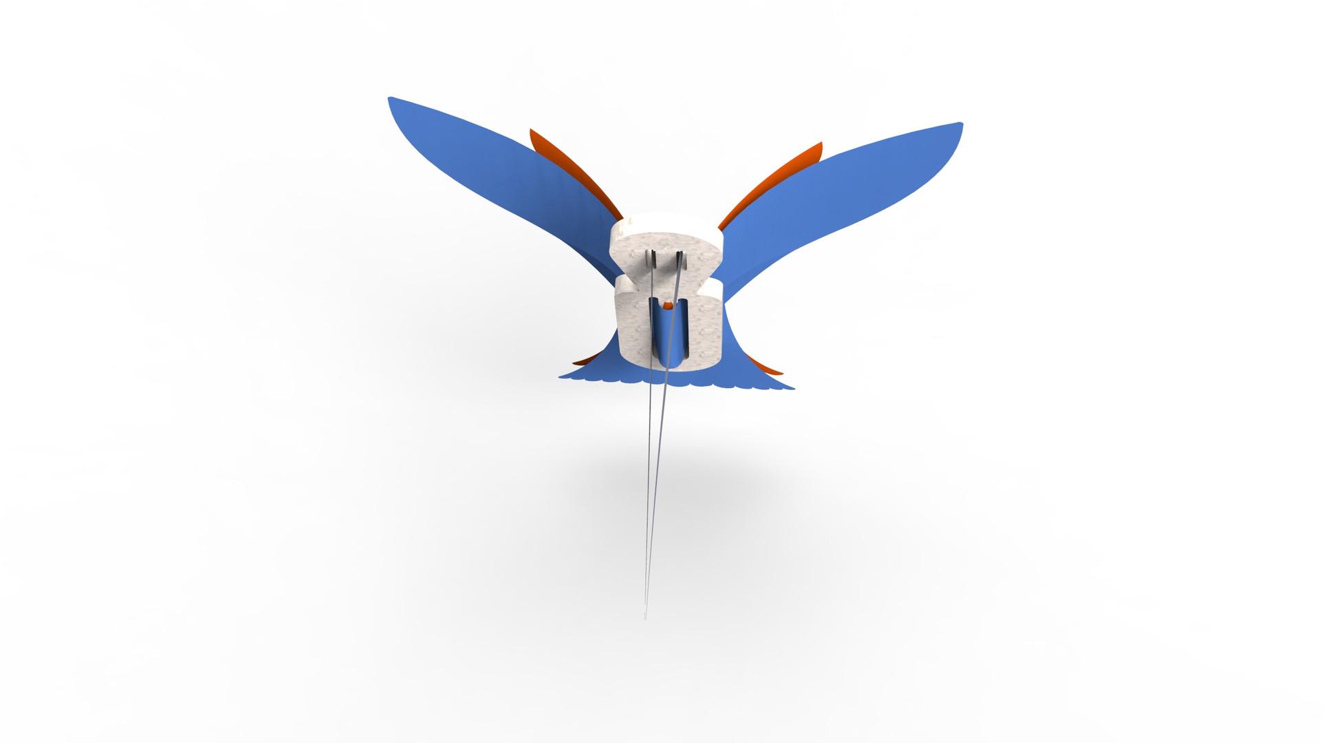colibrí.659.jpg