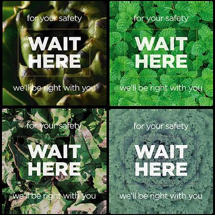 Wait Here, Mixed Veggies
