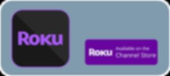 RokuBigButton.png