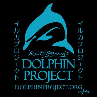Music and Videos for awareness and to raise money for the Dolphin Project