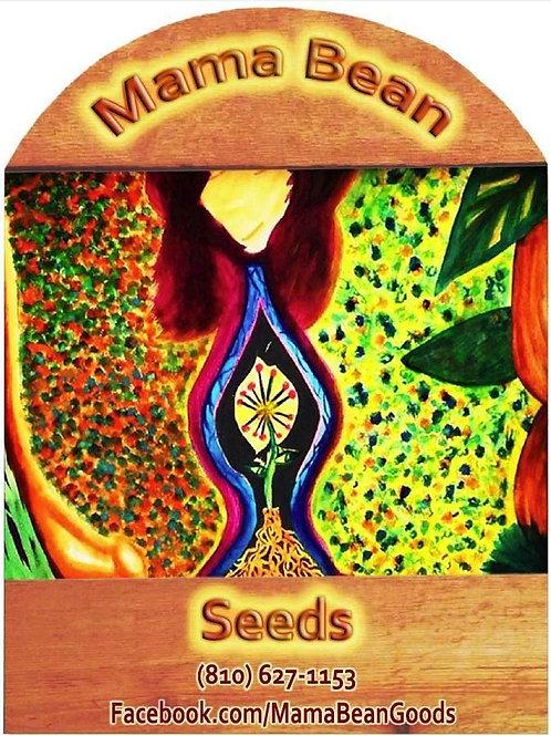 Mama Bean Seeds