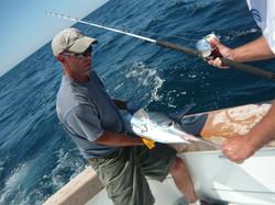 pick with billfish