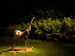 Sculpture Barrowman