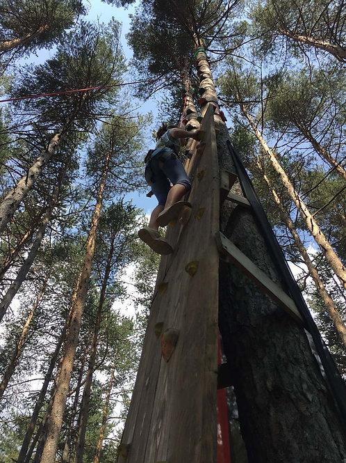 UP 2 TREE (arrampicata sugli alberi)