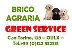 logo_green_service_oulx.jpg