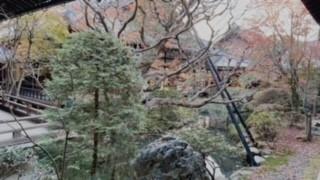 紅葉の名所 永観堂