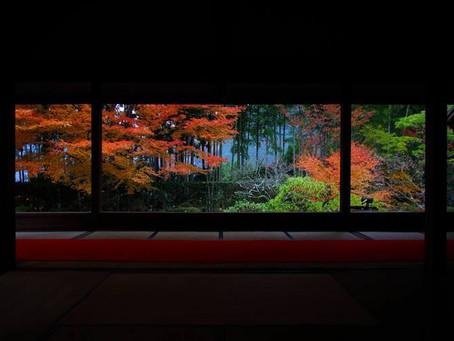 額縁の庭園と呼ばれる紅葉の名所
