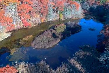 7) N Pond Aerial.jpg