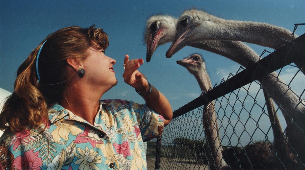 Ostrich lady.jpg