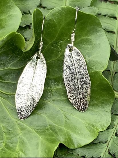 Small Leaf earrings in sterling silver on fish hook earwires
