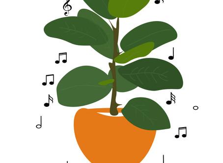 الموسيقى والنباتات
