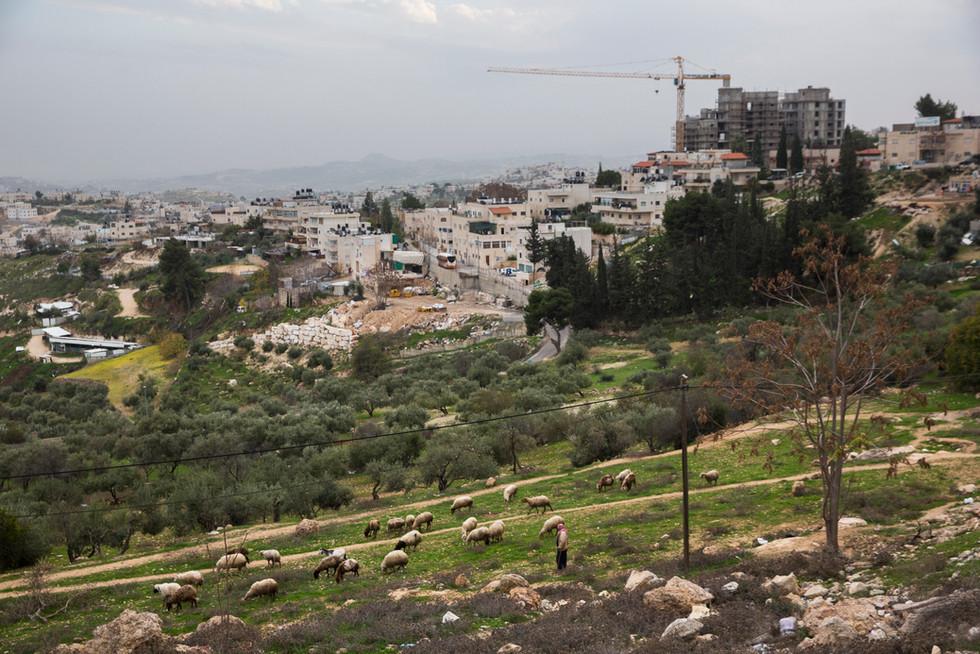 Israel, 2014.