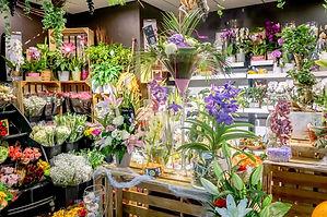 Carrefour Fleurs