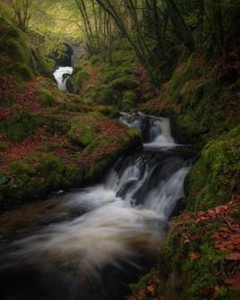 Hafod-Estate-Autumn-Waterfall.jpg