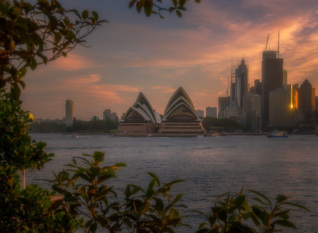 Pink sunsets in Sydney