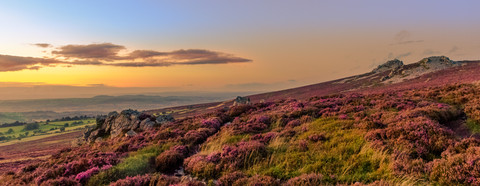 Sunset over the Heather, Stiperstone, Sh