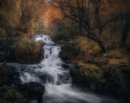 Afon-Gamlan-Snowdonia-Autumn.jpg