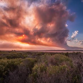 Rosedale bushfire