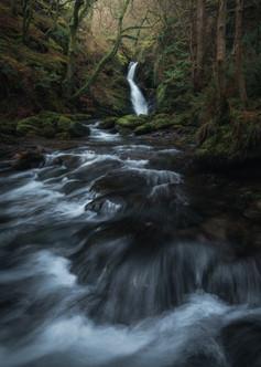 Dolgoch-Falls-Rapids-Winter.jpg