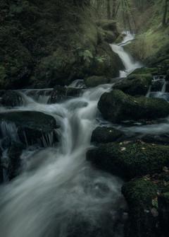 Hafod-Estate-Mossy-Waterfall.jpg