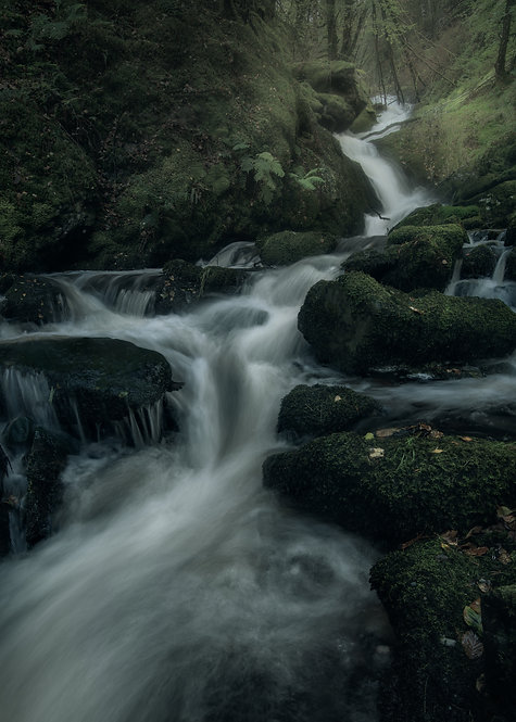 Mossy Seat Falls