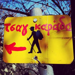 מסלולי הליכה