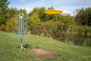 Disc Golfing