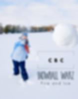 Snowball Warz.png