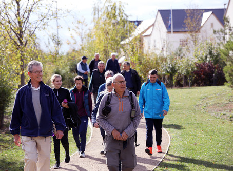 Health Walks in Alconbury Weald