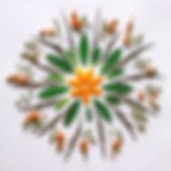 Bohemian flower mandala on the white background.jpg Natural mandala flat lay, zen, yoga, meditation,