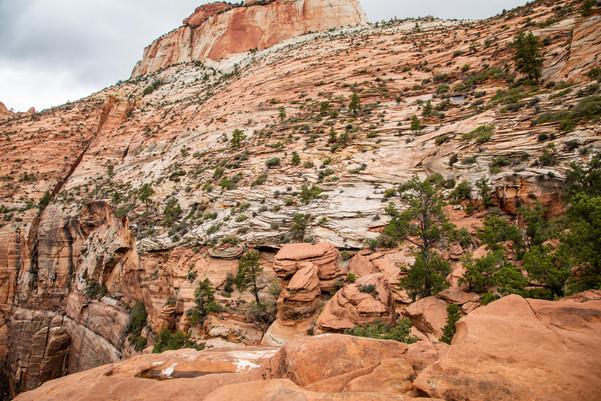 Zion Elopement - Overlook - Elope Southern Utah