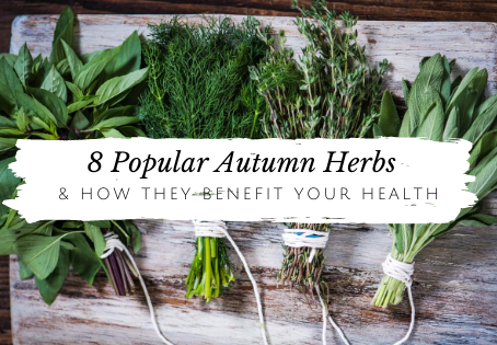 8 Popular Autumn Herbs and How They Benefit Your Health