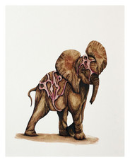 Golden Elephant (6 of 15)