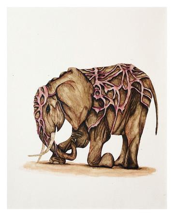 Golden Elephant (8 of 15)