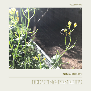 Natural Remedy: Bee Sting
