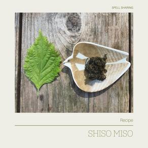 Recipe: Shiso Miso