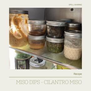 Recipe/Ritual: Miso Dips